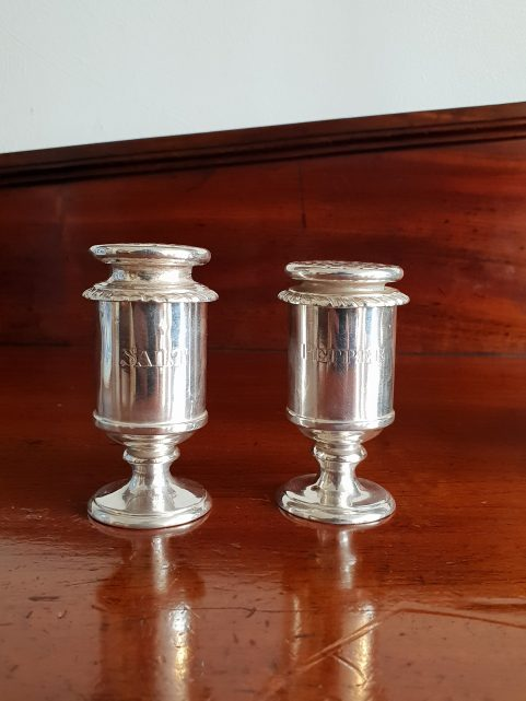 Pair of Anglo Indian silver salt and peppers by Hamilton and Co c. 1830