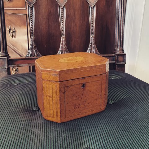 Regency lacewood tea caddy c1810