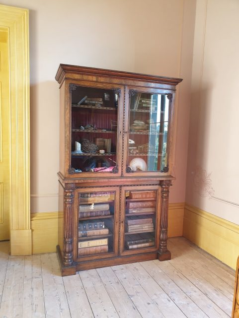 George IV rosewood drawing room cabinet c 1820